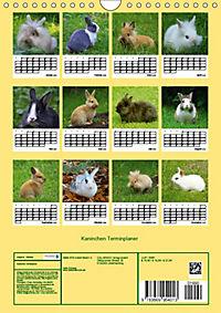 Kaninchen Terminplaner (Wandkalender 2019 DIN A4 hoch) - Produktdetailbild 13