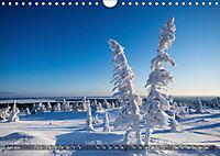 Karelien - Winterwandern in Finnland (Wandkalender 2019 DIN A4 quer) - Produktdetailbild 9