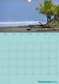 Karibik - Sonne, Strand und Palmen (Wandkalender 2019 DIN A3 hoch) - Produktdetailbild 9
