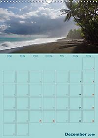 Karibik - Sonne, Strand und Palmen (Wandkalender 2019 DIN A3 hoch) - Produktdetailbild 12