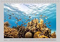 Karibische Meerblicke (Tischkalender 2019 DIN A5 quer) - Produktdetailbild 4