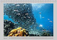 Karibische Meerblicke (Tischkalender 2019 DIN A5 quer) - Produktdetailbild 3