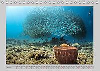 Karibische Meerblicke (Tischkalender 2019 DIN A5 quer) - Produktdetailbild 5