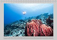 Karibische Meerblicke (Tischkalender 2019 DIN A5 quer) - Produktdetailbild 9