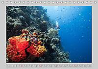 Karibische Meerblicke (Tischkalender 2019 DIN A5 quer) - Produktdetailbild 11
