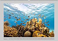 Karibische Meerblicke (Wandkalender 2019 DIN A2 quer) - Produktdetailbild 4