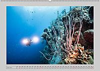 Karibische Meerblicke (Wandkalender 2019 DIN A2 quer) - Produktdetailbild 6