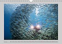 Karibische Meerblicke (Wandkalender 2019 DIN A4 quer) - Produktdetailbild 7