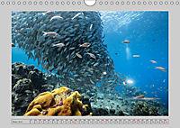 Karibische Meerblicke (Wandkalender 2019 DIN A4 quer) - Produktdetailbild 3