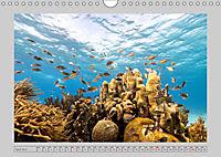 Karibische Meerblicke (Wandkalender 2019 DIN A4 quer) - Produktdetailbild 4