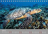 Karibische Meeresschildkröten (Tischkalender 2019 DIN A5 quer) - Produktdetailbild 7