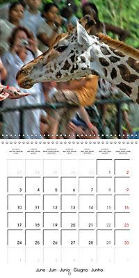 Karibu Kenya (Wall Calendar 2019 300 × 300 mm Square) - Produktdetailbild 6