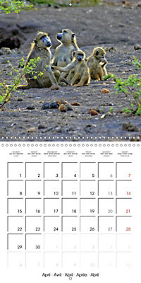Karibu Kenya (Wall Calendar 2019 300 × 300 mm Square) - Produktdetailbild 4