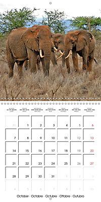 Karibu Kenya (Wall Calendar 2019 300 × 300 mm Square) - Produktdetailbild 10