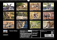 Katzen Afrikas (Wandkalender 2019 DIN A3 quer) - Produktdetailbild 13