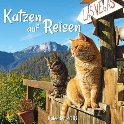 Katzen auf Reisen Broschurkal. 2018