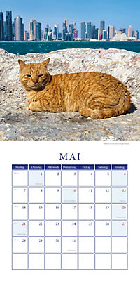 Katzen auf Reisen Broschurkal. 2018 - Produktdetailbild 5