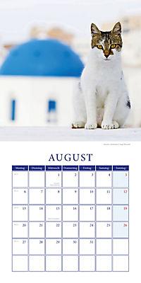 Katzen auf Reisen Broschurkal. 2018 - Produktdetailbild 8