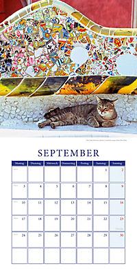 Katzen auf Reisen Broschurkal. 2018 - Produktdetailbild 9