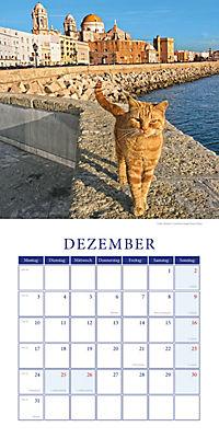 Katzen auf Reisen Broschurkal. 2018 - Produktdetailbild 12