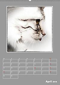 Katzen Blues / Planer (Wandkalender 2019 DIN A2 hoch) - Produktdetailbild 4