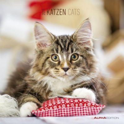 Katzen / Cats 2019, ALPHA EDITION