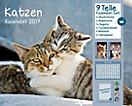 Katzen Kalenderpaket 2017, 9tlg.