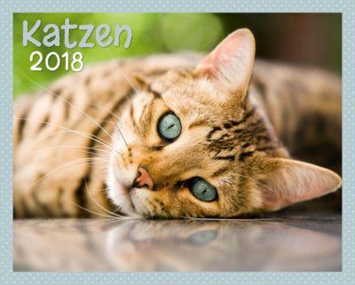 Katzen Kalenderpaket 2018, 6-tlg.