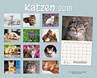 Katzen Kalenderpaket 2018, 6-tlg. - Produktdetailbild 10