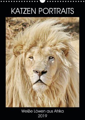 KATZEN PORTRAITS Weiße Löwen aus Afrika (Wandkalender 2019 DIN A3 hoch), N N