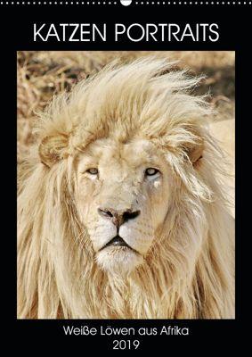 KATZEN PORTRAITS Weisse Löwen aus Afrika (Wandkalender 2019 DIN A2 hoch), N N