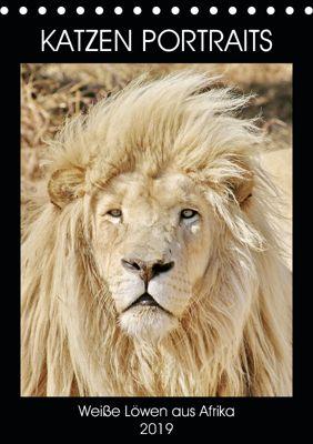 KATZEN PORTRAITS Weiße Löwen aus Afrika (Tischkalender 2019 DIN A5 hoch), N N