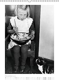 Katzenaugen (Wandkalender 2019 DIN A3 hoch) - Produktdetailbild 12