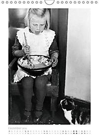 Katzenaugen (Wandkalender 2019 DIN A4 hoch) - Produktdetailbild 12