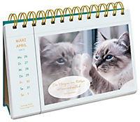 Katzenglück 2018 - Produktdetailbild 5