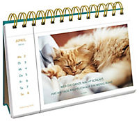 Katzenglück 2018 - Produktdetailbild 6