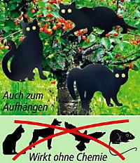 Katzenscheuche, 3-teilig - Produktdetailbild 2