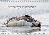 Kegelrobben auf der Insel Düne (Tischkalender 2019 DIN A5 quer) - Produktdetailbild 10