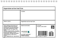 Kegelrobben auf der Insel Düne (Tischkalender 2019 DIN A5 quer) - Produktdetailbild 13