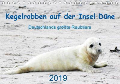 Kegelrobben auf der Insel Düne (Tischkalender 2019 DIN A5 quer), N. Wilhelm