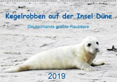 Kegelrobben auf der Insel Düne (Wandkalender 2019 DIN A2 quer), N. Wilhelm