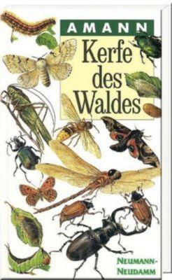 Kerfe des Waldes - Gottfried Amann |