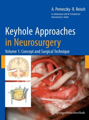 Keyhole Approaches in Neurosurgery, Axel Perneczky, Robert Reisch