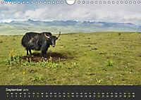 Kham - Tibets abgelegenes Hochland (Wandkalender 2019 DIN A4 quer) - Produktdetailbild 9