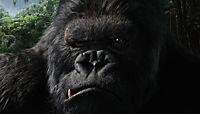 King Kong (2005) - Produktdetailbild 6