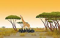 Kiriku und die wilden Tiere - Produktdetailbild 2