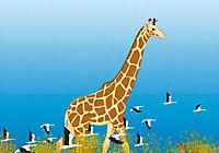 Kiriku und die wilden Tiere - Produktdetailbild 8