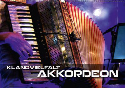 Klangvielfalt Akkordeon (Wandkalender 2019 DIN A2 quer), Renate Bleicher