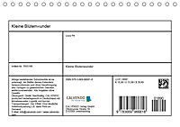 Kleine Blütenwunder (Tischkalender 2019 DIN A5 quer) - Produktdetailbild 13