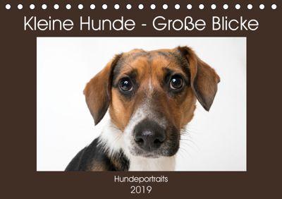 Kleine Hunde - Große Blicke (Tischkalender 2019 DIN A5 quer), Akrema-Photography